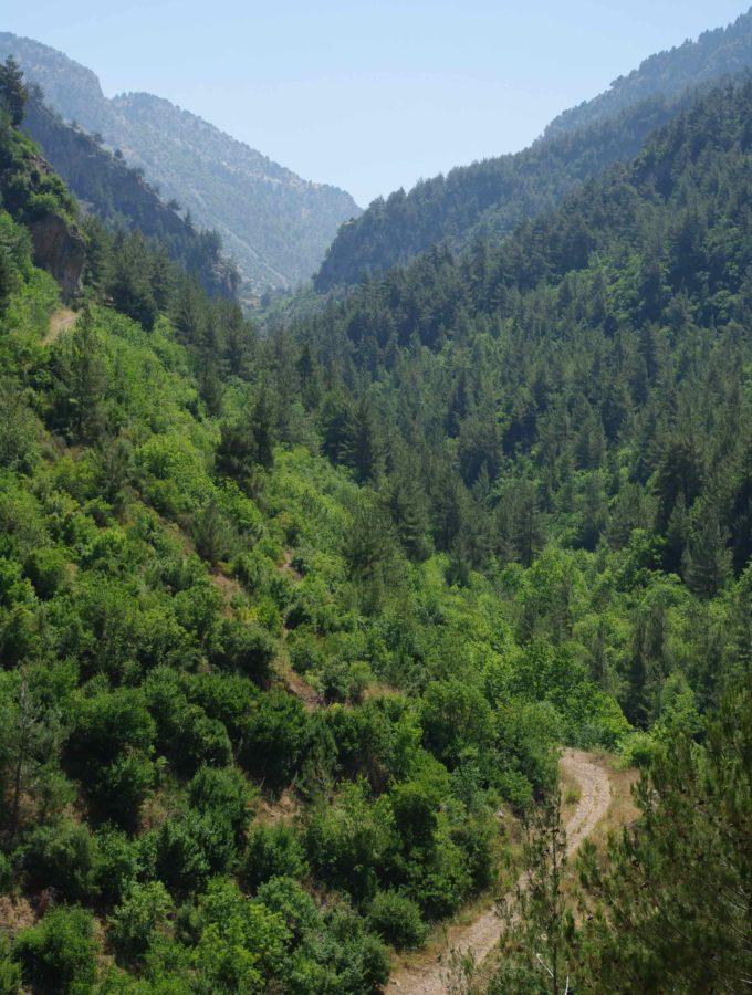Hike in Wadi Jhanam